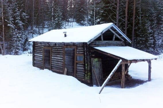 Stallane en vinterdag