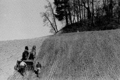 Kornet sås i Eikabakken på Søve