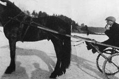 Travkjøring ved Torva