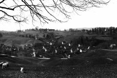 Vesthagen 1948