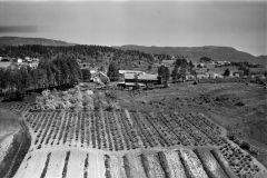 Fehn gård, Rauhaug