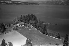 Torsnes gård, Fen
