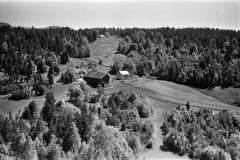 Kåsa gård, Fen