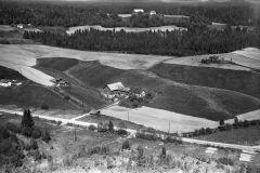 Eidsbygda, Susås